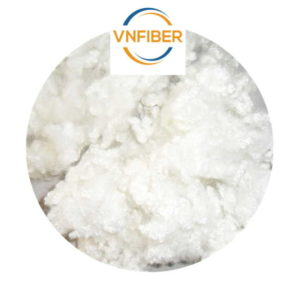 polyester staple fibre india